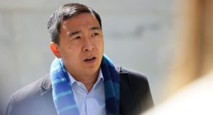 Andrew Yang Cant Explain When Asked Why He Supports Israel Bombing Gaza