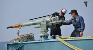 International Community Urges Japan to End Antarctic Whaling