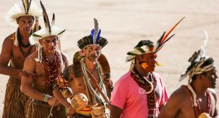 Brazil 2017: environmental and indigenous rollbacks, rising violence