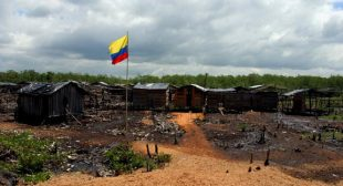 In Colombia, Free Trade Brings More Poverty and More Killings