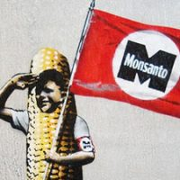 Surprise, surprise !! Monsanto-Funded Research Finds Their Products Safe !
