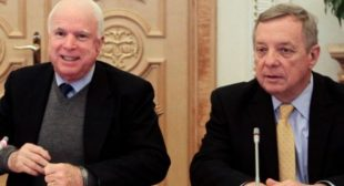 Warmonger is back : McCain to Obama: Send arms to Ukraine