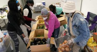 Health insurance or food: Americans face difficult choices amid pandemic