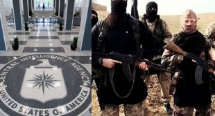 'CIA created ISIS', says Julian Assange as Wikileaks releases 500k US cables