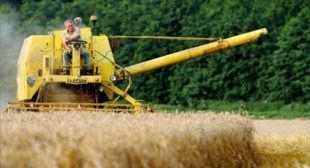 Corporations and wealthy elites now control more than 75 percent of the world's farmland