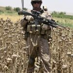 Geopolitics, Profit, and Poppies: How the CIA Turned Afghanistan into a Failed Narco-State
