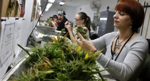 Colorado, USA Sells $19 Million in Cannabis in March: $1.9 Million Goes to Schools and Crime Down 10%