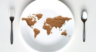 Radical UN Report Promotes Democratic Control of Food and an End to Corporate Domination