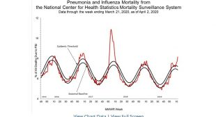 U.S. Will Cover-up Its Own Coronavirus Death Toll
