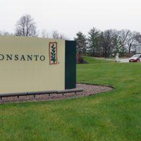 US pressures El Salvador to buy Monsanto's GMO seeds