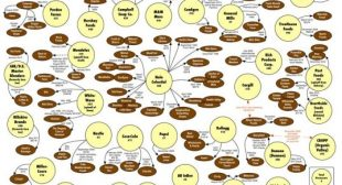 INFOGRAPHIC: Who Owns Organic Food Companies in 2014? | Inhabitots